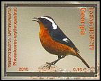 Cl: Moussier's Redstart (Phoenicurus moussieri)(Out of range)  new (2016)  [10/22]