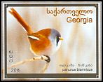 Cl: Bearded Reedling (Panurus biarmicus) new (2016)  [10/22]
