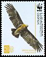 Cl: Greater Spotted Eagle (Aquila clanga) SG 509 (2007) 140 [4/21]