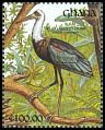Cl: Woolly-necked Stork (Ciconia episcopus) SG 1609 (1991)