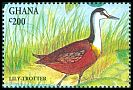 Cl: African Jacana (Actophilornis africanus)(Repeat for this country)  SG 1995 (1994) 60