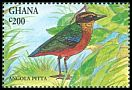 Cl: African Pitta (Pitta angolensis) SG 2000 (1994) 60
