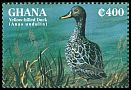Cl: Yellow-billed Duck (Anas undulata)(Out of range)  SG 2133 (1995) 90