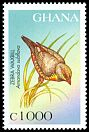 Cl: Zebra Waxbill (Sporaeginthus subflavus)(Repeat for this country)  SG 2547 (1997) 110