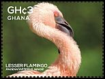 Cl: Lesser Flamingo (Phoenicopterus minor)(I do not have this stamp)  SG 3854c (2015)