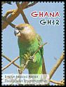 Cl: Brown-headed Parrot (Poicephalus cryptoxanthus)(Out of range and no other stamp)  SG 3792f (2012)  [11/8]