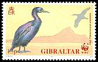 Cl: European Shag (Phalacrocorax aristotelis) SG 655 (1991) 140