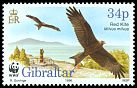 Cl: Red Kite (Milvus milvus) SG 784 (1996) 160