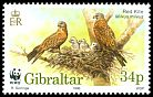 Cl: Red Kite (Milvus milvus)(Repeat for this country)  SG 787 (1996) 160