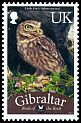 Cl: Little Owl (Athene noctua)(I do not have this stamp)  SG 1254a (2012)  [7/53]