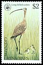 Cl: Long-billed Curlew (Numenius americanus)(Out of range)  SG 300 (1978)