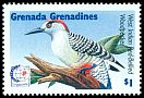 Cl: West Indian Woodpecker (Melanerpes superciliaris)(Out of range)  SG 2012 (1995) 45
