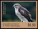 Cl: Broad-winged Hawk (Buteo platypterus)(I do not have this stamp)  new (2017)