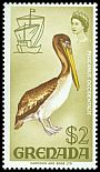 Cl: Brown Pelican (Pelecanus occidentalis) SG 319 (1968) 350