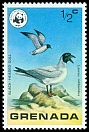 Cl: Black-headed Gull (Larus ridibundus)(Out of range)  SG 922 (1978) 10
