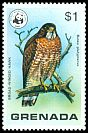 Cl: Broad-winged Hawk (Buteo platypterus) SG 927 (1978)