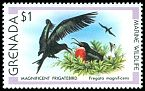 Cl: Magnificent Frigatebird (Fregata magnificens)(Repeat for this country)  SG 1015 (1979) 225
