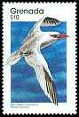 Cl: Red-billed Tropicbird (Phaethon aethereus) SG 2006 (1989)