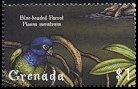 Cl: Blue-headed Parrot (Pionus menstruus)(Out of range)  SG 3918 (2000)
