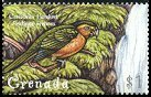 Cl: Brown-throated Parakeet (Aratinga pertinax)(Out of range)  SG 3922 (2000)
