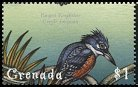 Cl: Ringed Kingfisher (Ceryle torquatus)(Out of range)  SG 3926 (2000)