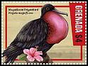 Cl: Magnificent Frigatebird (Fregata magnificens)(Repeat for this country)  new (2016)