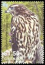 Cl: Northern Goshawk (Accipiter gentilis)(Out of range)  SG 5018f (2004)  [3/49]