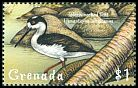 Cl: Black-necked Stilt (Himantopus mexicanus) SG 3915 (1999)