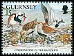 Cl: Ruddy Turnstone (Arenaria interpres)(Repeat for this country)  SG 532 (1991)