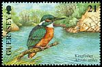 Cl: Common Kingfisher (Alcedo atthis)(Repeat for this country)  SG 891 (2001)