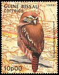 Cl: Ferruginous Pygmy-Owl (Glaucidium brasilianum)(Out of range)  SG 1030 (1989) 10