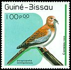 Cl: Laughing Dove (Streptopelia senegalensis) SG 1097 (1989) 15