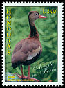 Cl: Black-bellied Whistling-Duck (Dendrocygna autumnalis) <<Piche>>  SG 1367 (1997) 20