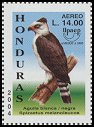 Cl: Black-and-white Hawk-Eagle (Spizastur melanoleucus) SG 1742c (2004)  [3/5]
