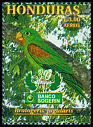 Cl: Orange-chinned Parakeet (Brotogeris jugularis) SG 1517 (1999)