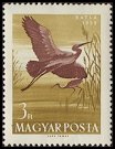 Cl: Glossy Ibis (Plegadis falcinellus) <<Batla>> (Repeat for this country)  SG 1581 (1959) 100 [2/7]