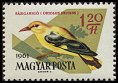 Cl: Eurasian Golden Oriole (Oriolus oriolus) <<S&aacute;rgarig&oacute;>> (Repeat for this country)  SG 1785 (1961) 10 [2/7]
