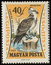Cl: Osprey (Pandion haliaetus) SG 1852 (1962) 15 [2/2]