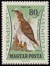 Cl: Booted Eagle (Aquila pennata)(Repeat for this country)  SG 1854 (1962) 25 [2/2]