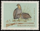 Cl: Grey Partridge (Perdix perdix) SG 2036 (1964) 10 [2/1]