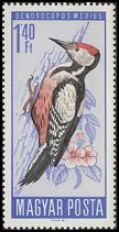 Cl: Middle Spotted Woodpecker (Dendrocopos medius) SG 2187 (1966) 30 [2/2]