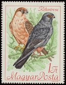 Cl: Red-footed Falcon (Falco vespertinus) <<K&eacute;k v&eacute;rcse>> (Repeat for this country)  SG 2349 (1968) 15 [2/7]