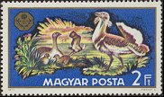 Cl: Great Bustard (Otis tarda)(Repeat for this country)  SG 2588 (1971) 160 [2/1]