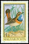 Cl: Bluethroat (Luscinia svecica) <<K&eacute;kbegy>>  SG 2797 (1973) 140