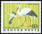 Cl: White Stork (Ciconia ciconia) <<Feh&eacute;r g&oacute;lya>> (Repeat for this country)  SG 3084 (1977) 35