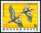 Cl: Purple Heron (Ardea purpurea) <<V&ouml;r&uml;os g&eacute;m>> (Repeat for this country)  SG 3085 (1977) 40
