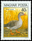 Cl: Greylag Goose (Anser anser) <<Ny&aacute;ri l&uacute;d>> (Repeat for this country)  SG 3340 (1980) 20