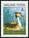 Cl: Great Crested Grebe (Podiceps cristatus) <<B&uacute;bos v&ouml;cs&ouml;k>>  SG 3344 (1980) 150