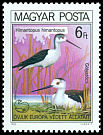 Cl: Black-winged Stilt (Himantopus himantopus) <<G&oacute;lyat&ouml;cs>> (Repeat for this country)  SG 3345 (1980) 225