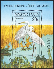Cl: Great Egret (Ardea alba) <<Nagykocsag>> (Repeat for this country)  SG 3346 (1980) 475 [2/1]